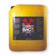 Добавка BAC F1 Extreme Booster 5 л