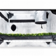 Garden Highpro Probox Propagator L 60