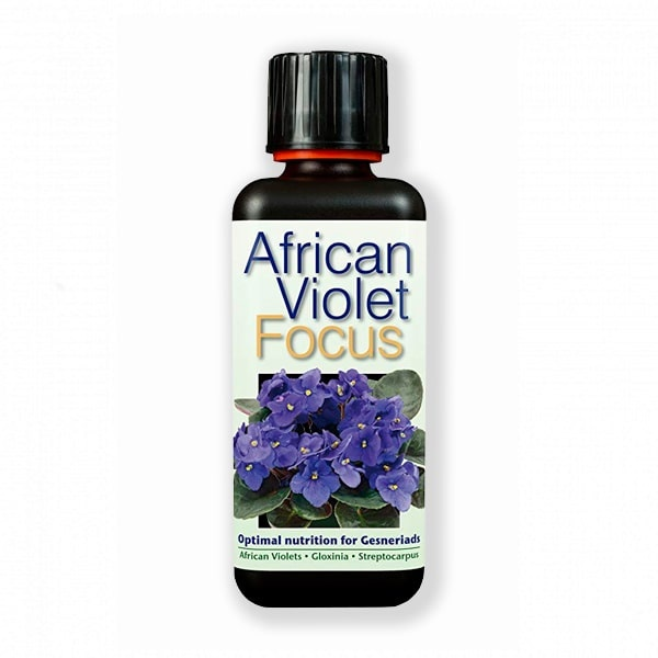African-Violet-Focus-300-ml-349x1000