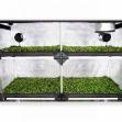 Garden Highpro Probox Propagator XL 120