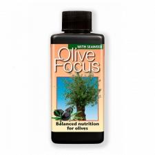 Удобрение Olive Focus 100 | 300 мл