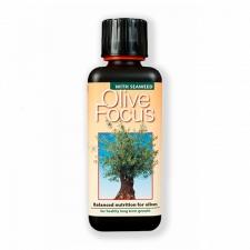 Удобрение Olive Focus 300 мл